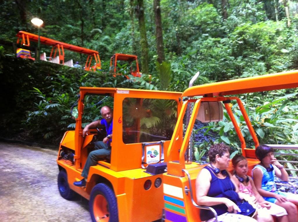 Tren de las Cavernas del río Camuy