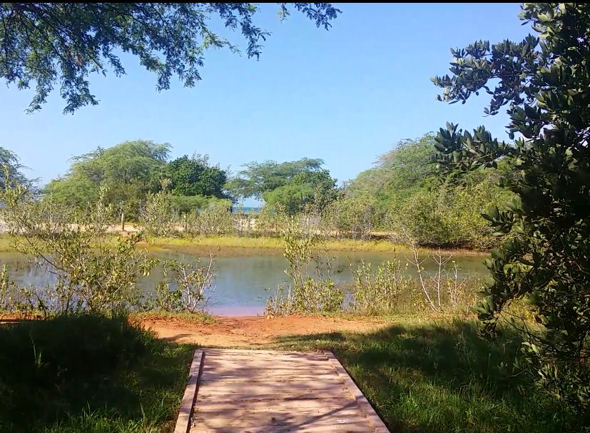 Refugio Nacional de la Vida Silvestre en Combate Beach