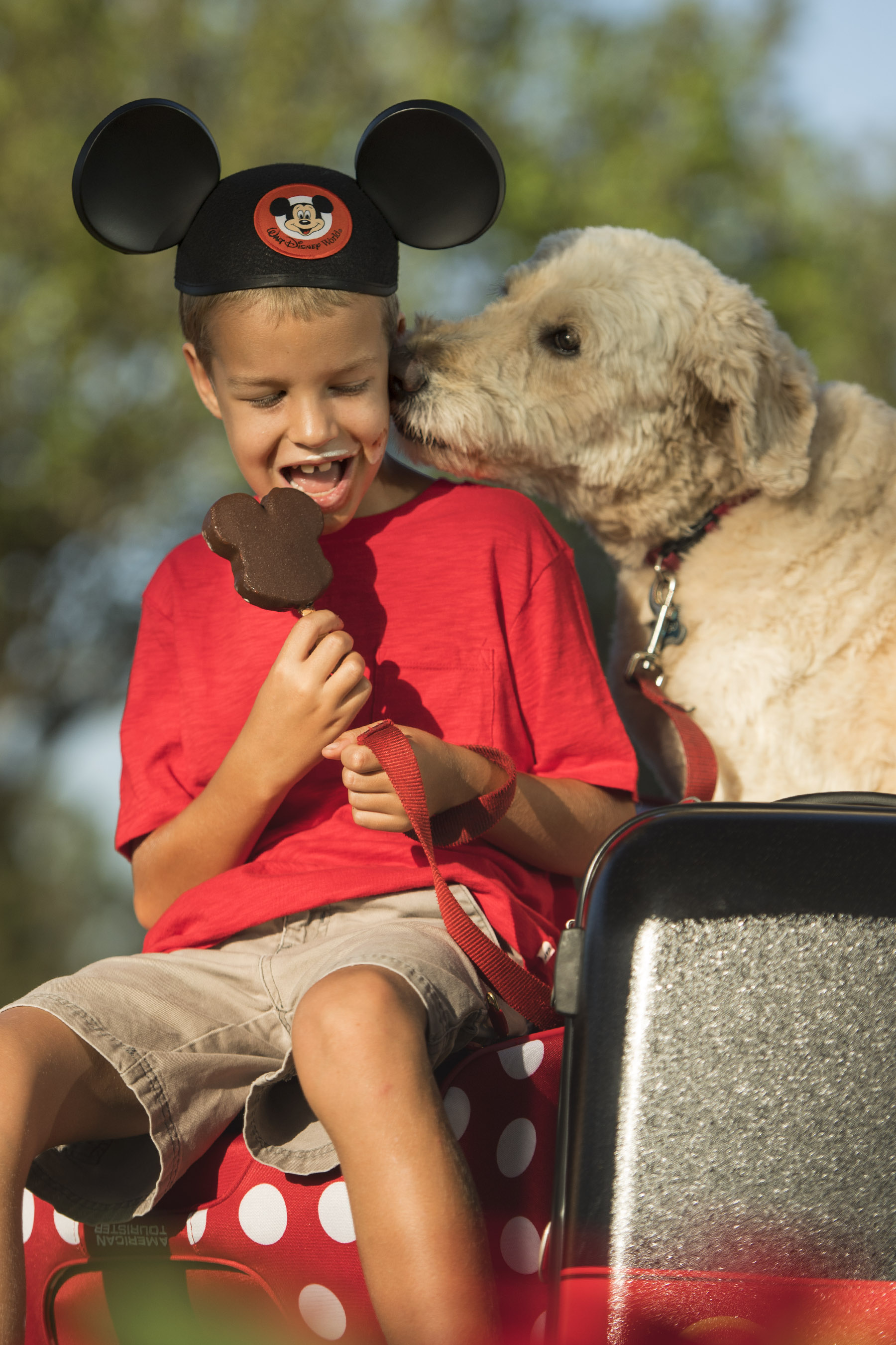 Beginning Sunday, Oct. 15, 2017, Walt Disney World Resort will welcome guests Ð and their canine companions Ð to four resort hotels: DisneyÕs Yacht Club Resort, Disney Port Orleans Resort Ð Riverside, DisneyÕs Art of Animation Resort and the cabins at Disney's Fort Wilderness Resort & Campground. Each resort offers a PlutoÕs Welcome Kit with special amenities, easy access to outdoor pet exercise areas and green spaces with pet relief areas. The new service permits up to two dogs per guest room. (David Roark, photographer)